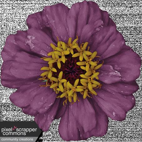 Feel - Flower