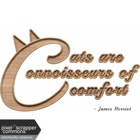 Cats and Comfort Quotation Word Art