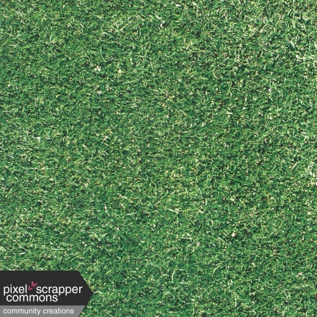 Grass Turf Textured Paper Graphic By Tina Shaw Pixel Scrapper