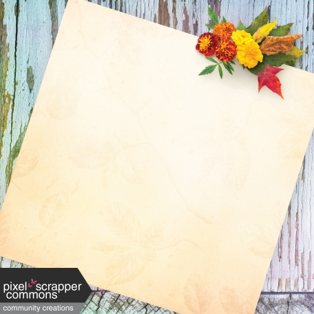 Fall Wonder Paper 3