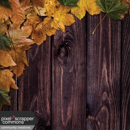 Fall Wonder Paper 5