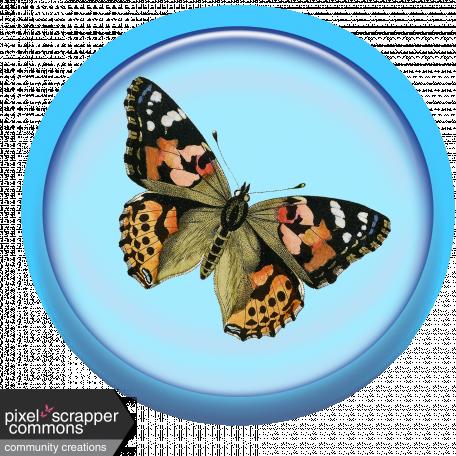 Blue Butterfly Brad