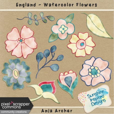 England - Watercolor Flowers