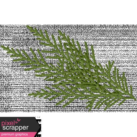 It's Christmas - Green Pine Branch