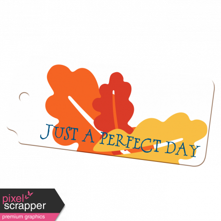 Perfect Day Tag