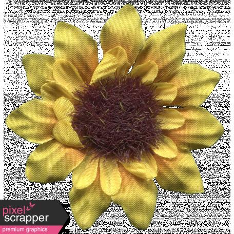 Sunshine & Lemons - Flower