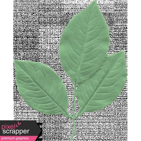 Leaf 015 - Hello