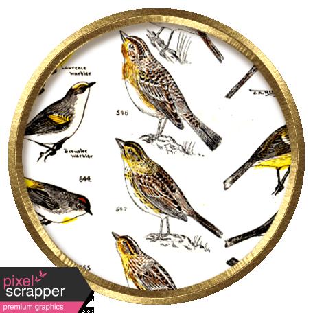 Bird Brad 05
