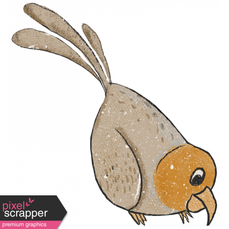 Pretty Bird (bird 03)