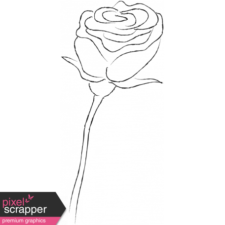 Drawn Flowers - Templates - Sketch Rose