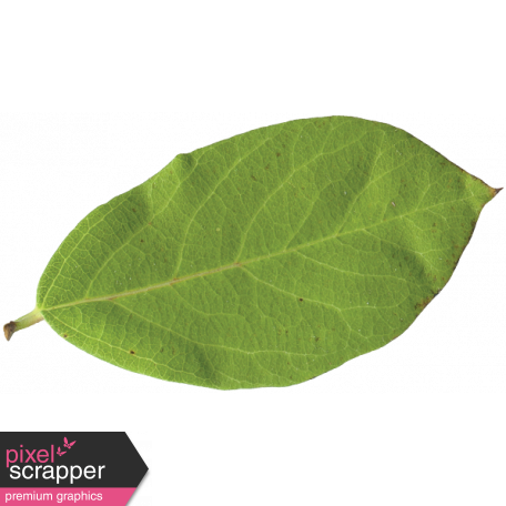 unwind leaf