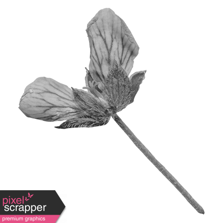 Flowers No.29-11 template