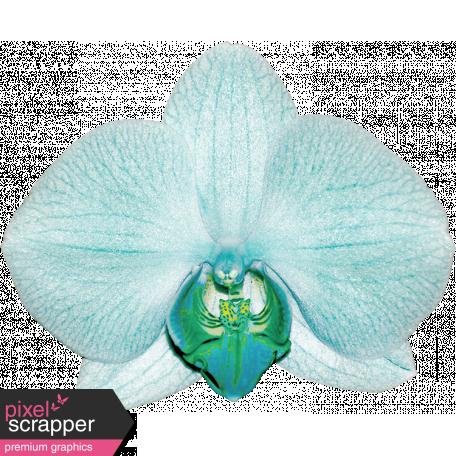Unwind Mini Kit - Teal Orchid