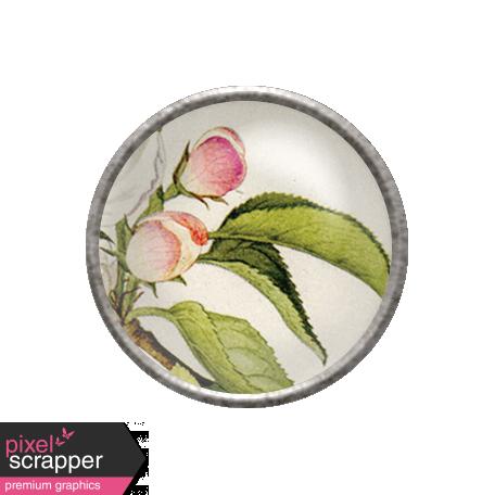 Apple Crisp - Apple Blossom Brad 02