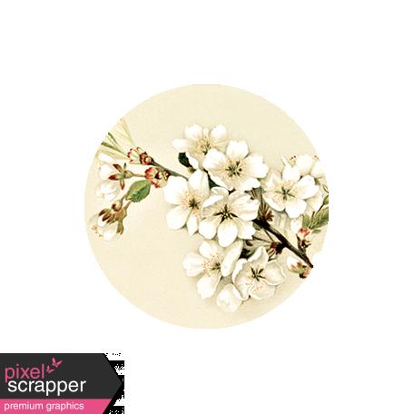 Apple Crisp - Apple Blossom Brad Disk 01