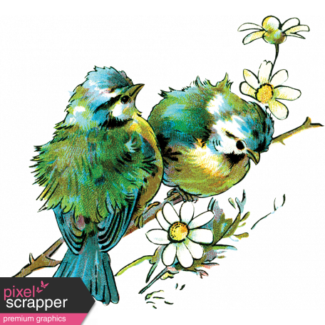 Many Thanks - Birds