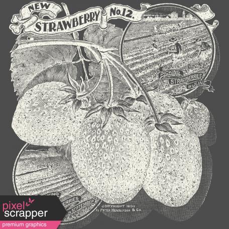 Strawberry Fields - Chalk Strawberry - Cream