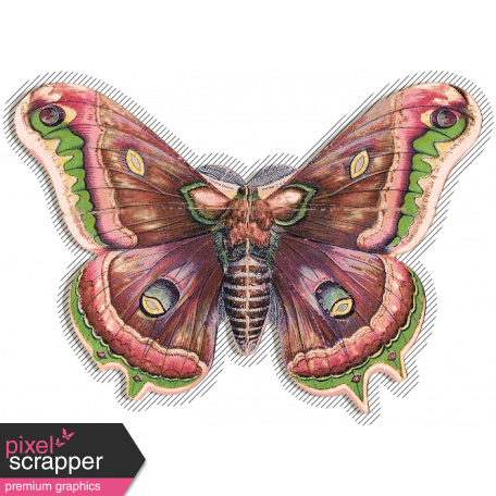 Spring Day Collab - May Flowers Butterfly Moth