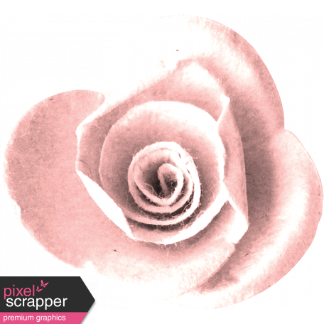 Inner Wild Pink Flower