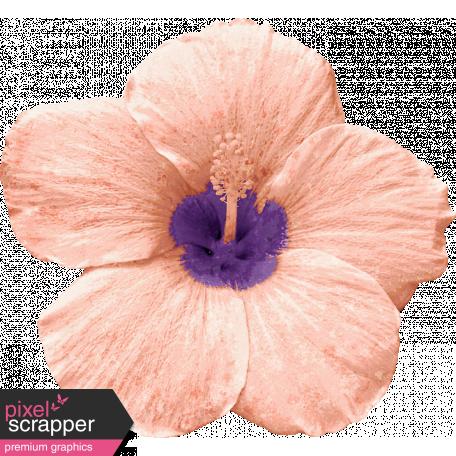 Winter in the Tropics Flower