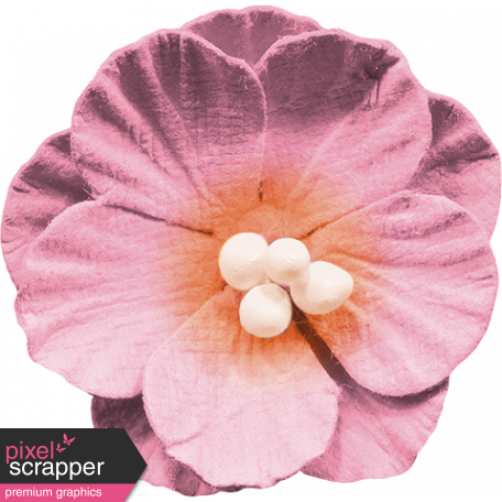 Bohemian Sunshine Element Pink Flower