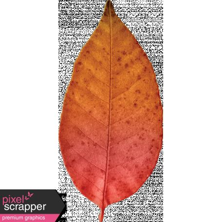 Furry Cuddles Leaf 3