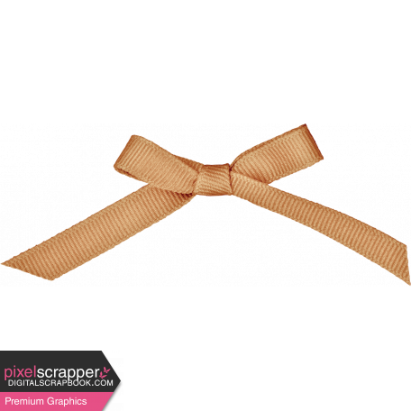 Classy Gold Bow