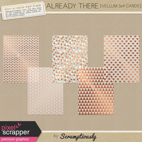 Already There Copper Vellum Journal Cards