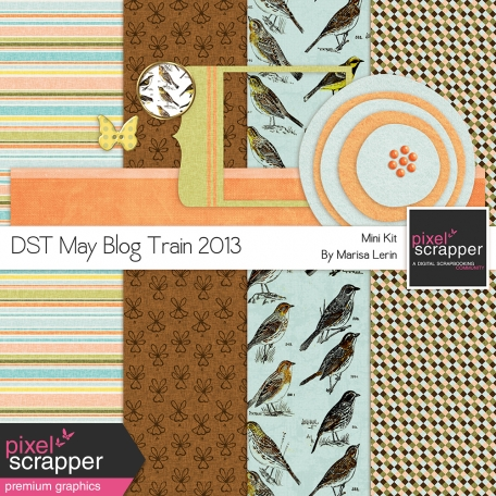 DST May 2013 Blog Train Mini Kit
