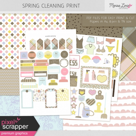 Spring Cleaning Print Kit
