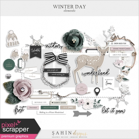 Winter Day Elements Pack