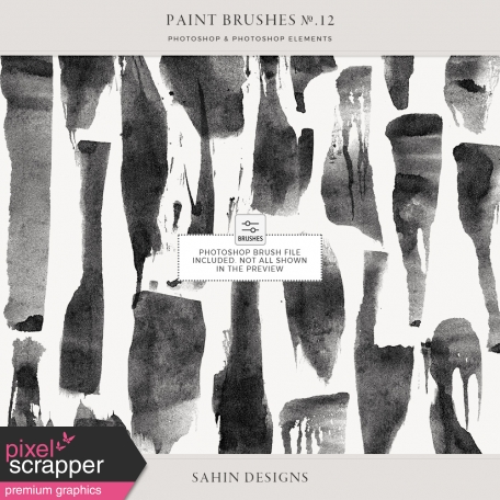 Paint Brushes No.12