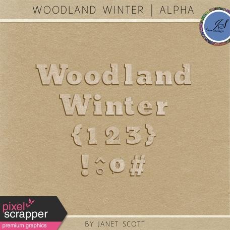 Woodland Winter - Wooden Alphabet Kit