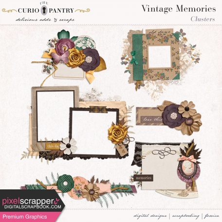 Vintage Memories: Genealogy Clusters