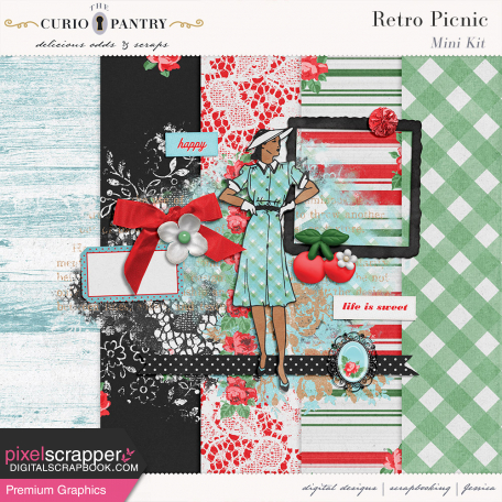 mini kit by jessica dunn retro picnic bold colors