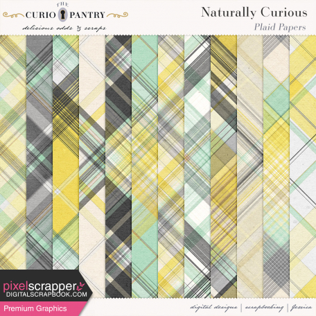 Naturally Curious Plaid Papers