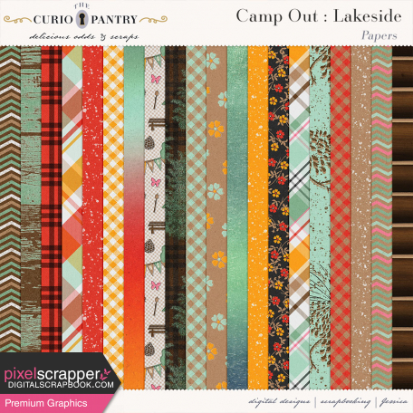 Camp Out : Lakeside Papers
