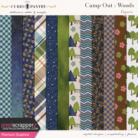 Camp Out : Woods Papers