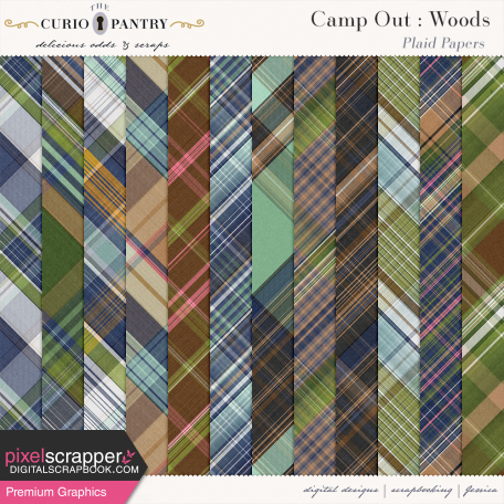 Camp Out : Woods Plaid Papers