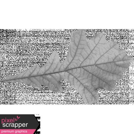 Leaf Template 021