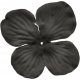 No Tricks, Just Treats- Black Solid Flower #01