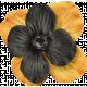 No Tricks, Just Treats-Orange And Black Flower