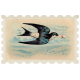 Sweet Valentine- Bird stamp