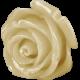 Sweet Valentine Elements- Tan Rosebud