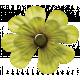 Oh Lucky Day- Light Green Clover Flower