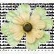 Oh Lucky Day- Light teal & Cream Clover Flower
