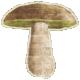 Enchanted- Mushroom 02 Sticker