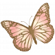 Oh Baby, Baby- Pink Butterfly