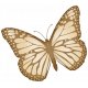 Oh Baby, Baby- Tan Butterfly