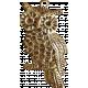 School Fun- Metal Owl